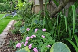 Exotic Jungle Garden